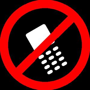cellulare vietato in cabina elettorale